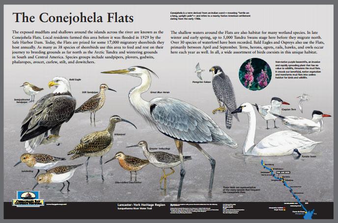 Conejohela Flats History Panel